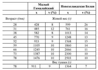 Сколько весит кролик разных пород по месяцам