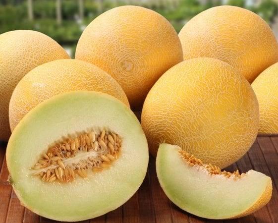 Киви - это фрукт или ягода? описание, употребление в пищу, польза и вред