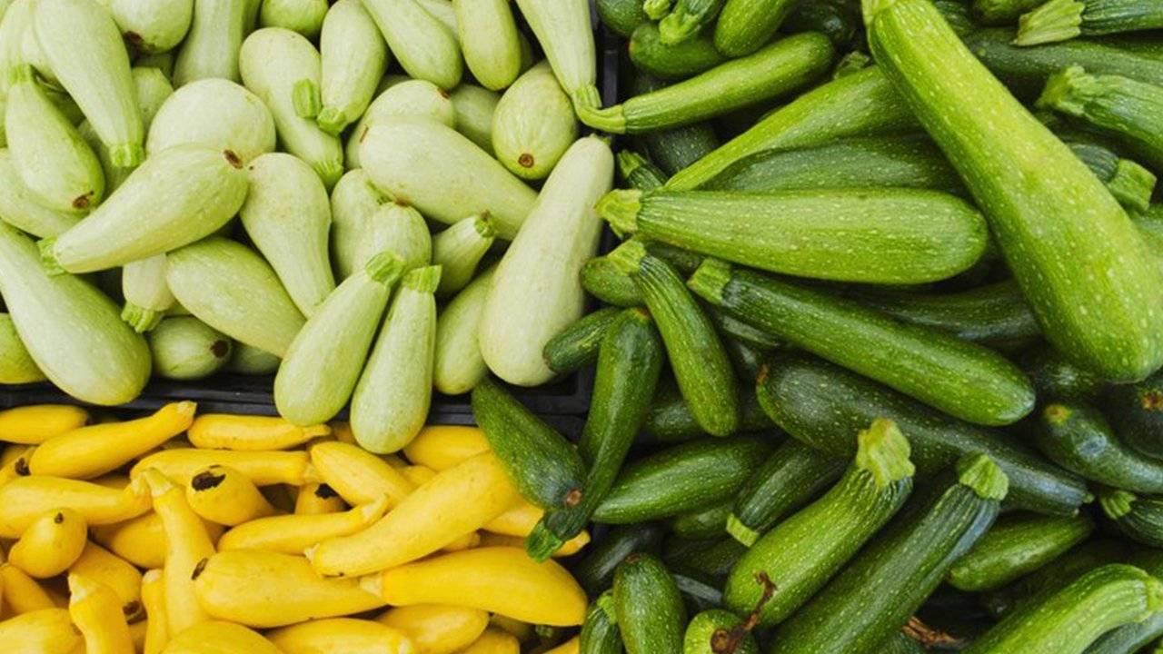 Чем подкормить кабачки после высадки в открытый грунт: народные средства и химия