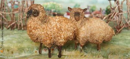 Курдючный баран: описание, виды, кормление, разведение