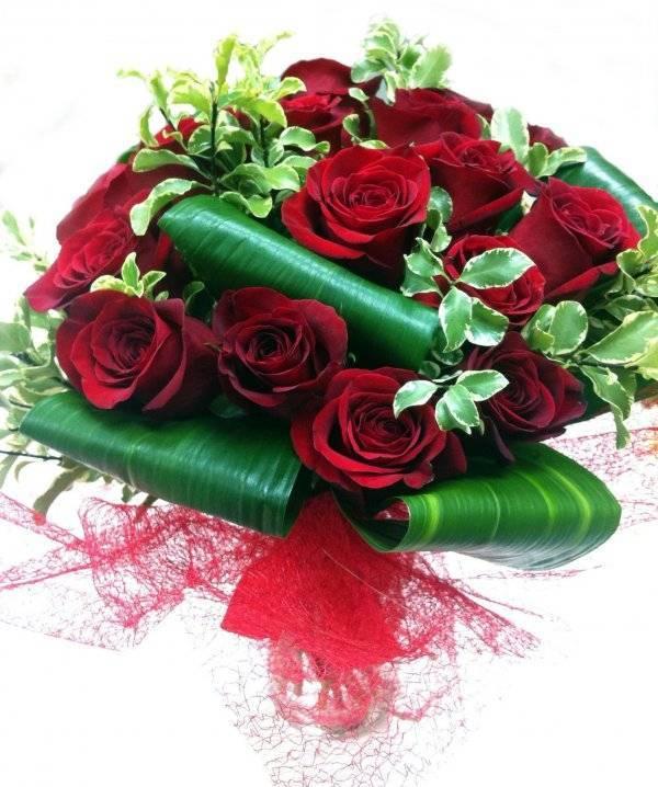 Бордовые розы (26 фото): выбираем темно-бордовые пионовидные и бархатные розы, кустовые и плетистые сорта бордового цвета