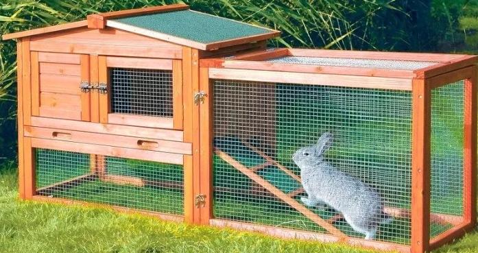 О вольере для кроликов: плюсы такого содержания, как сделать своими руками