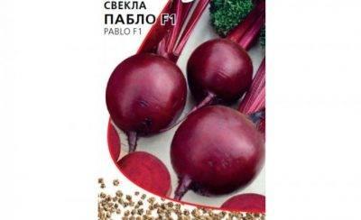 Сладкие сорта свеклы. лучшие сорта свеклы для подмосковья, сибири и средней полосы россии. | красивый дом и сад