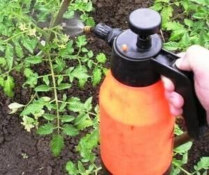 Как приготовить раствор эпина для опрыскивания. в саду и огороде. для садовых деревьев
