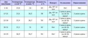 Инкубация яиц мулардов: таблица режима. срок инкубации в домашних условиях