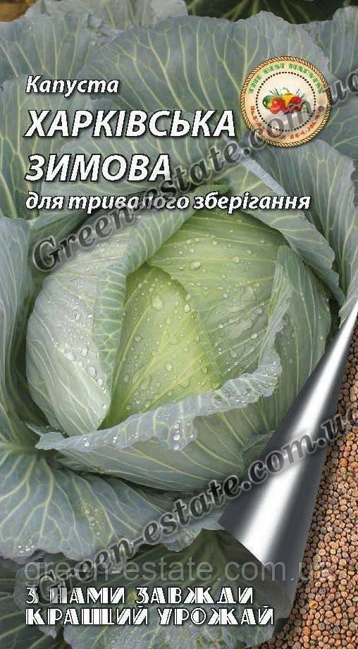 Описание сорта капусты харьковская