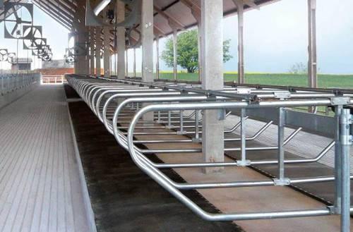 Какие бывают кормораздатчики для ферм крс?