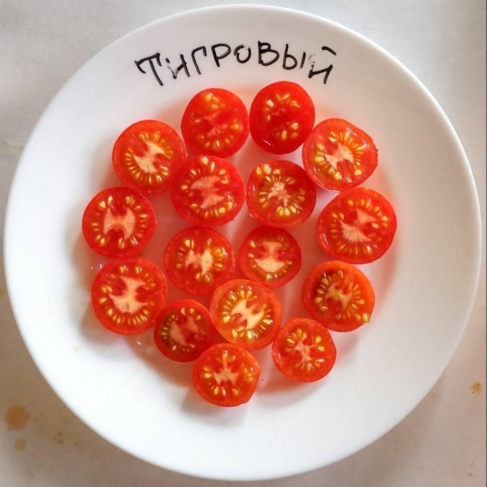 Низкорослые томаты – самые урожайные сорта