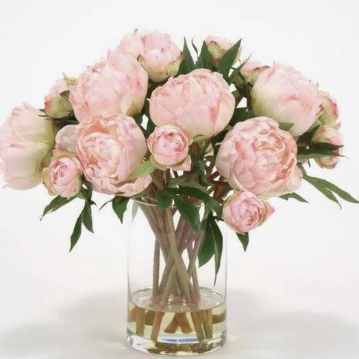 Как сохранить срезанные пионы в домашних условиях. чтобы цветы подольше стояли в вазе - onwomen.ru