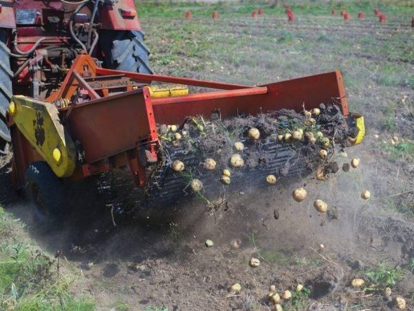 Виды картофелесажалки для мотоблока, как сделать своими руками, их достоинства и принцип работы