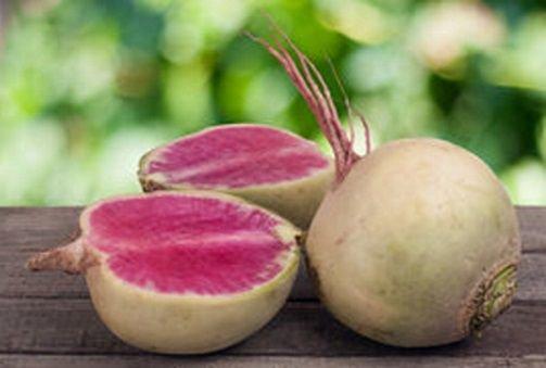 Редька маргеланская: что это такое и как выращивать, ухаживать за корнеплодом, чтобы получить максимум пользы?