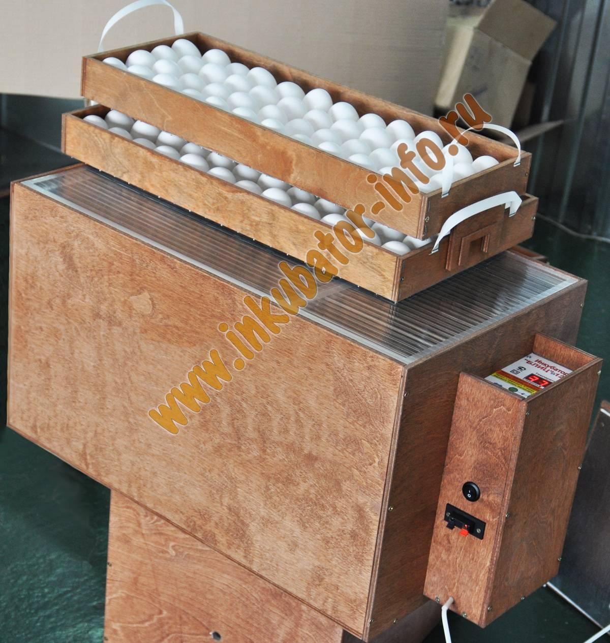 Инкубатор блиц норма — описание модели и инструкция по эксплуатации устройства