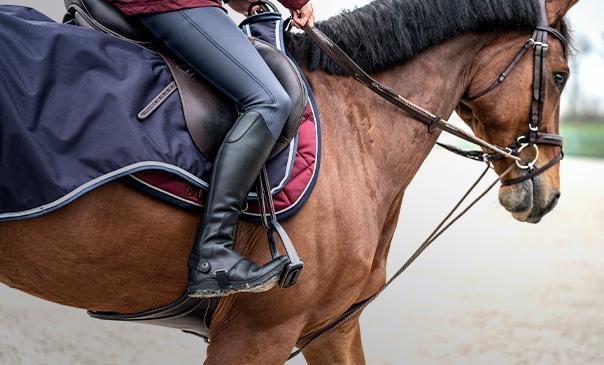 Как выбрать и сделать своими руками амуницию для лошади