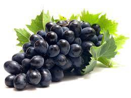 Что делать если замерз виноград? уход за виноградом пострадавшим от морозов