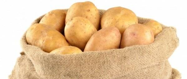 Наташа: описание семенного сорта картофеля, характеристики, агротехника