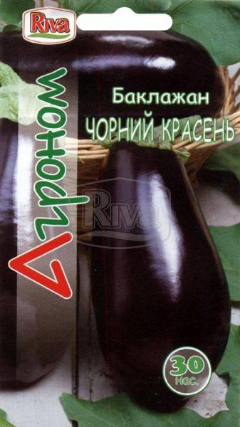 Правила выращивания баклажана черный красавец, описание сорта - общая информация - 2020