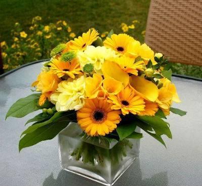 Как сохранить срезанные хризантемы в вазе подольше: советы экспертов