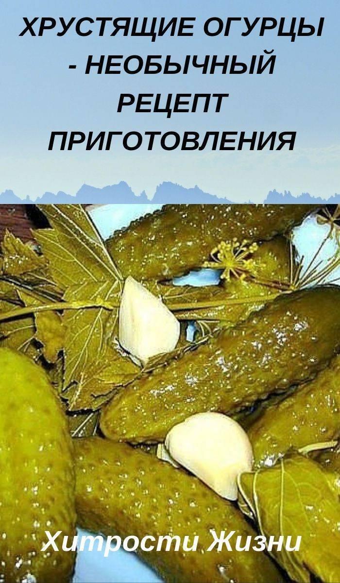 Выбираем лучшие сорта огурцов сибирской селекции: описание и фото