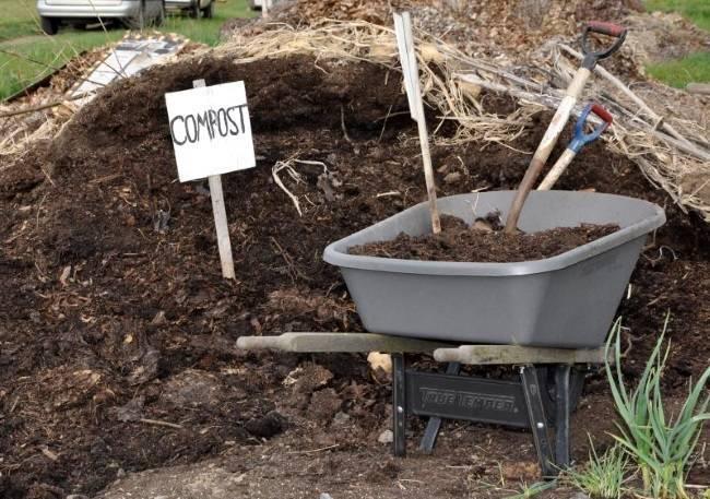 Как вырастить огурцы в мешках