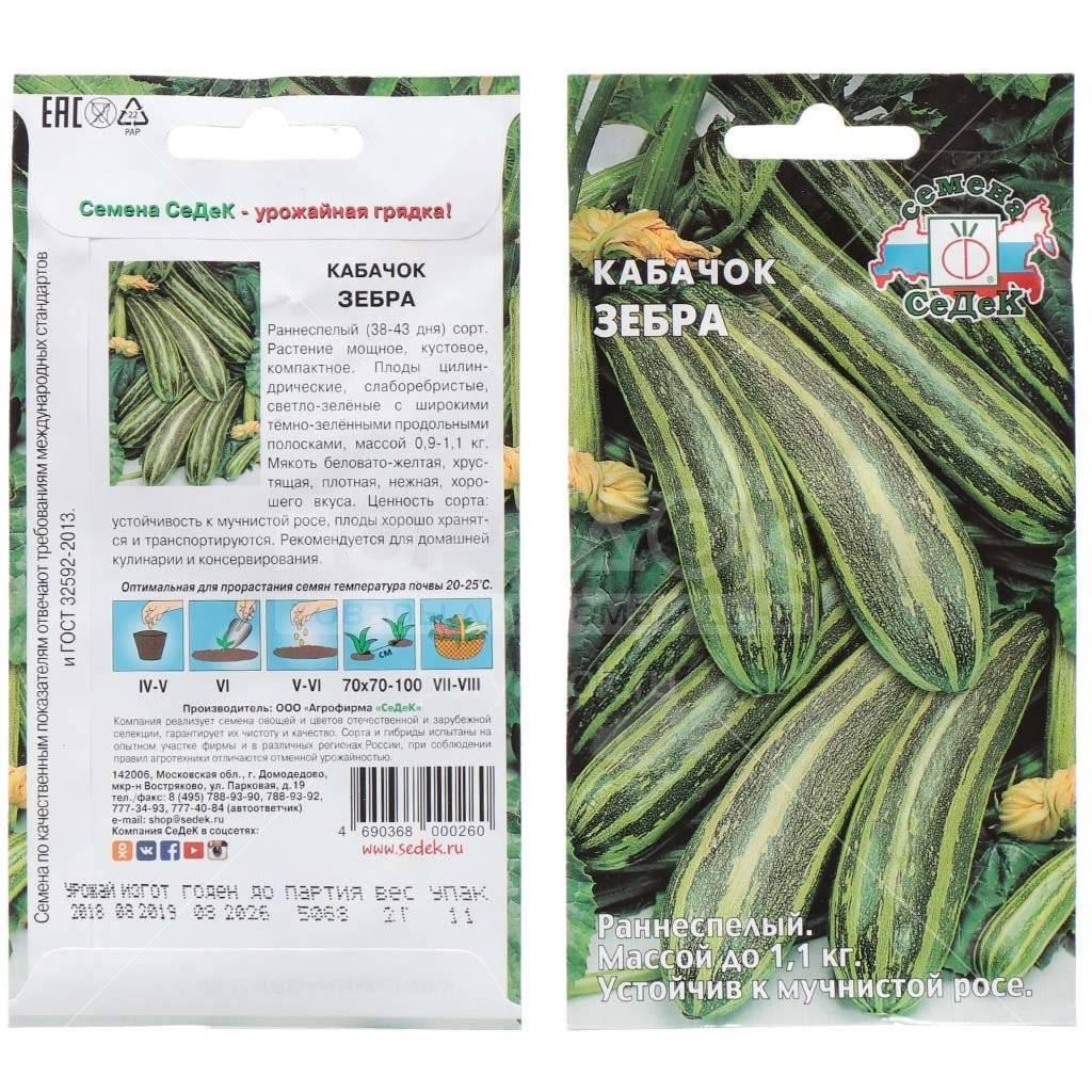 Как выращивать цукини: выбор семян и уход за рассадой, схема посадки, подкормки