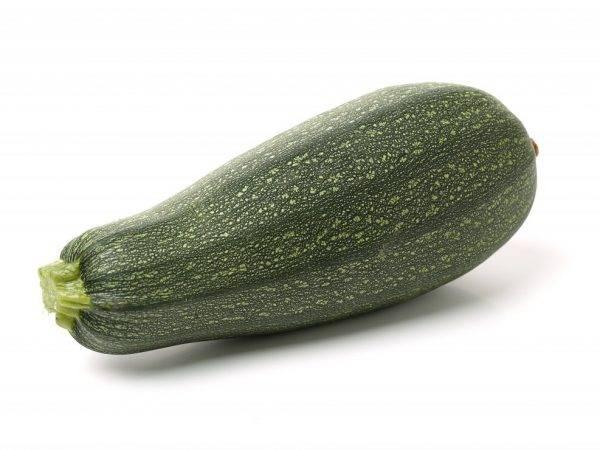 Популярные сорта кабачков с зелёными плодами