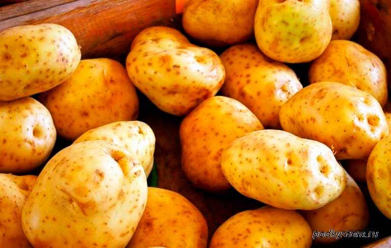 Как повысить урожайность картофеля на домашнем огороде (даче)