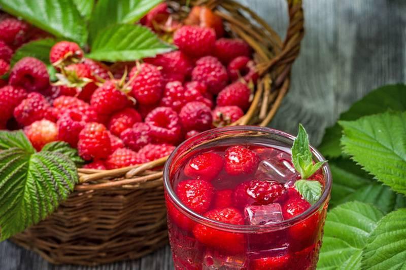 Польза свежих и сушеных ягод малины: рецепты народной медицины