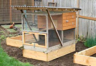 Особенности строительства зимнего курятника на 10 кур