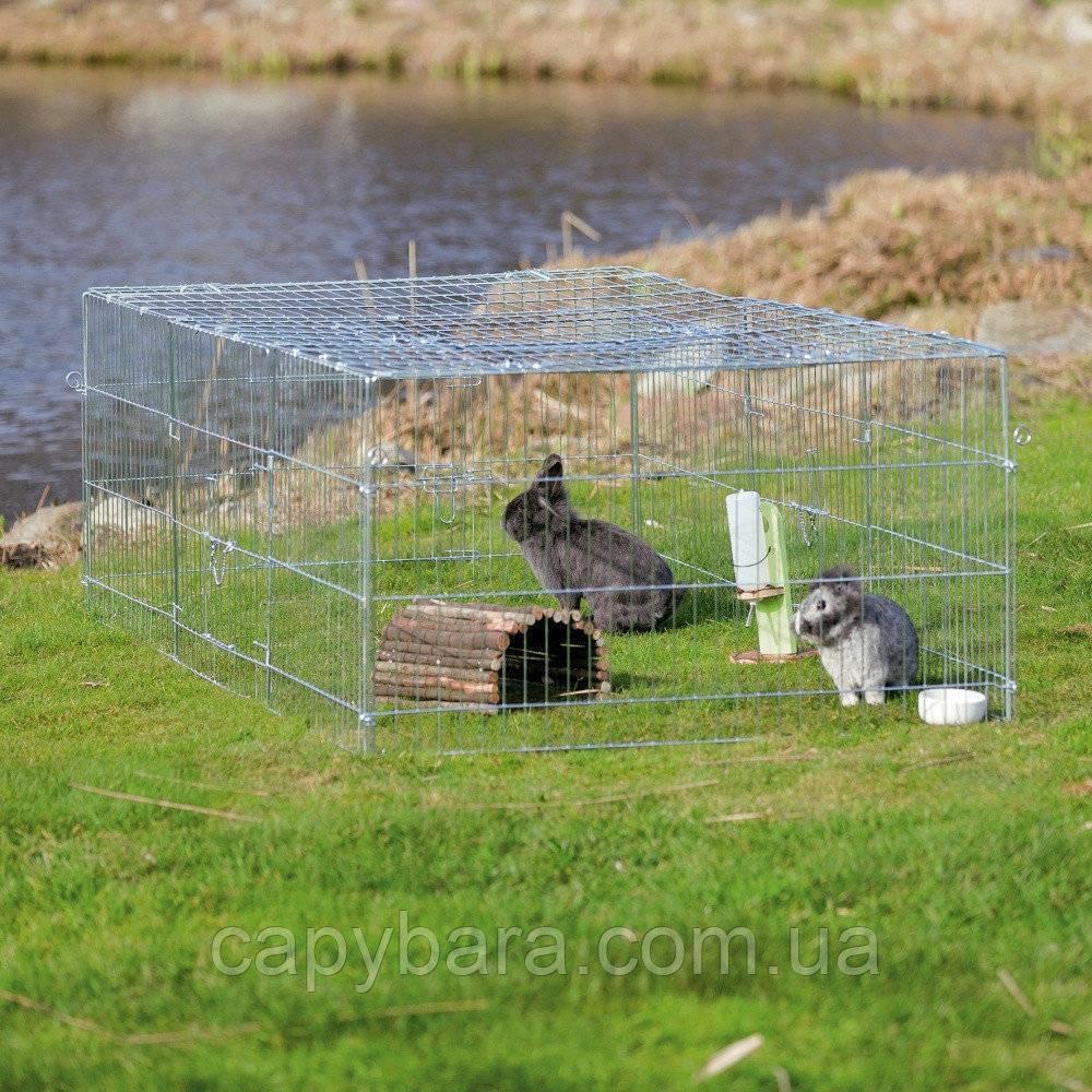 Как сделать вольер для кроликов: подробная инструкция, чертежи и рекомендации - общая информация - 2020
