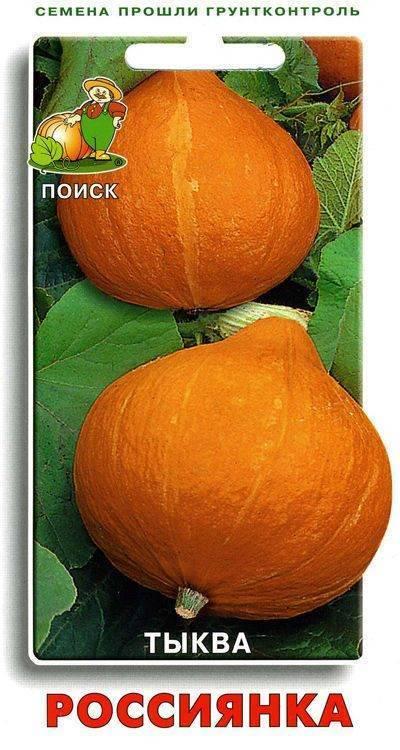 Характеритика и описание тыквы «россиянка»