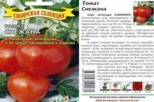 Как правильно сажать и ухаживать за помидорами?
