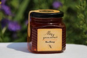Дягилевый мёд: свойства и особенности применения продукта