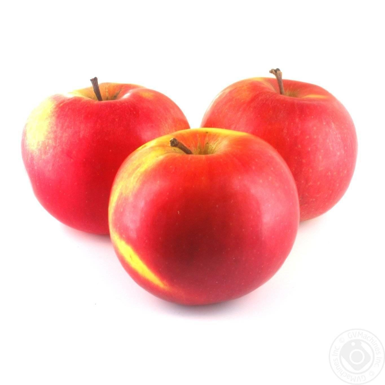О выращивании яблони айдаред