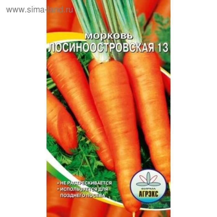 Морковь лосиноостровская: расписываем по порядку