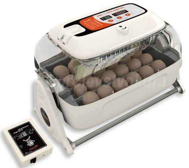 Как пользоваться инкубатором для яиц: инструкция птицевода