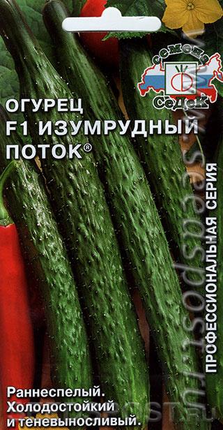 Огурцы изумрудный поток: характеристика и описание сорта, фото, отзывы