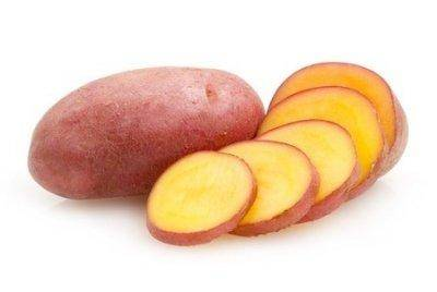 Картофель белладона, лаура, гала