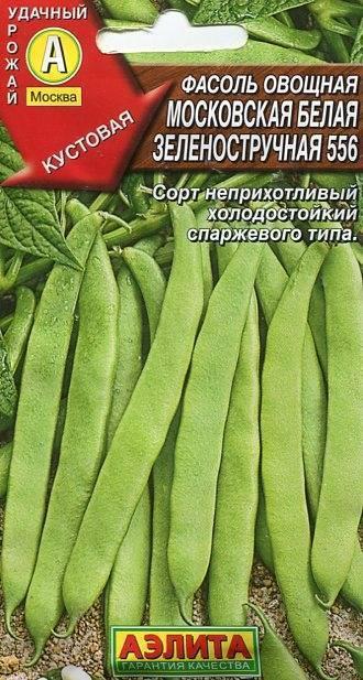 Фасоль московская белая зеленостручная 556: отзывы, характеристика, урожайность сорта, фото