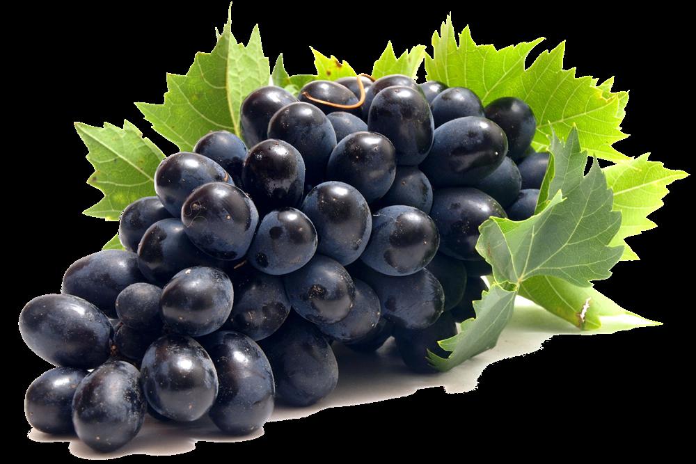 Фунгициды для винограда: описание и применение фунгицидов