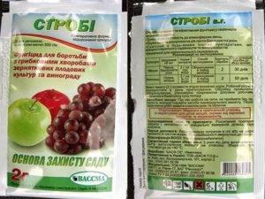 Фунгициды для винограда