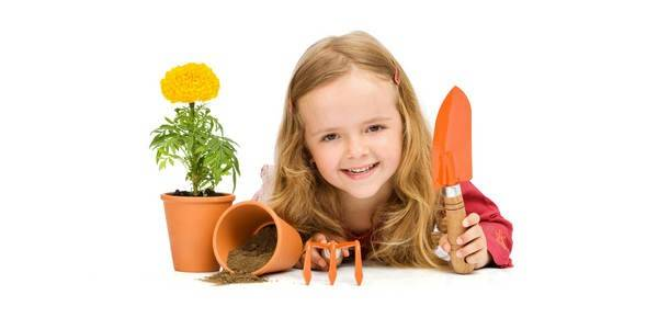 Какие комнатные цветы можно держать в детской комнате