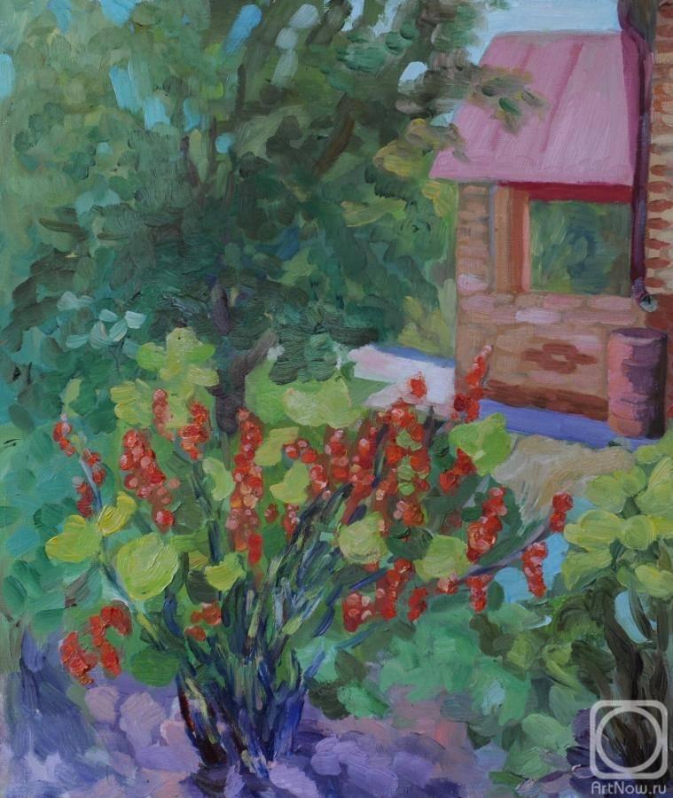 Смородина татьяна — ягоды грибы