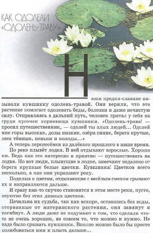 Одолень-трава – значение славянского оберега для женщин и мужчин