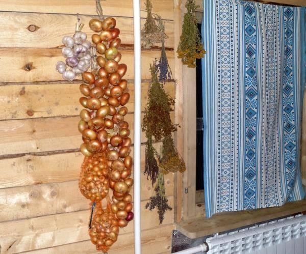 Правила и тонкости хранения репчатого лука - общая информация - 2020