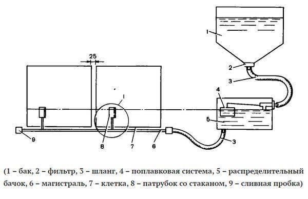 Как сделать поилку для гусят своими руками: пошаговая инструкция, материалы