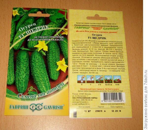 Сорт огурцов щедрик f1: описание и характеристика, отзывы