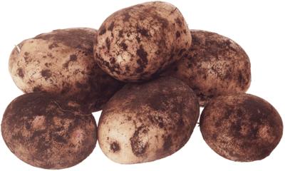 Картошка синеглазка: описание сорта, полезные свойства, отзывы