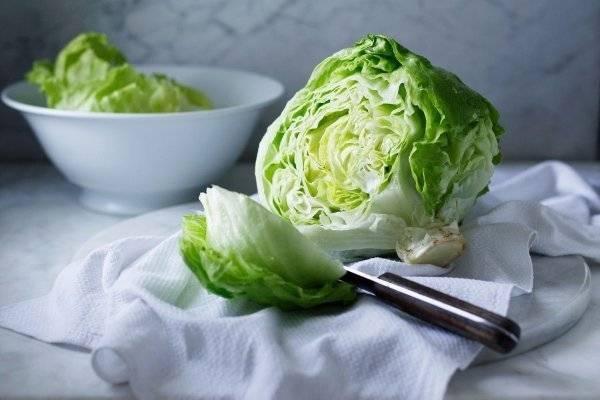 Как вырастить салат айсберг на даче