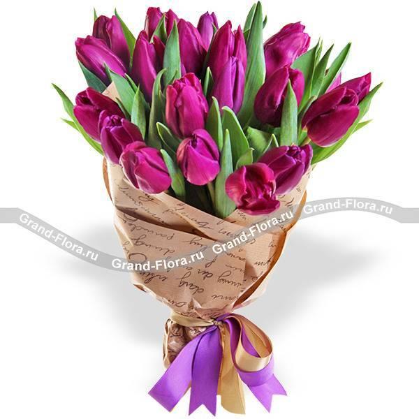 Цветы тюльпаны: как правильно вырастить, чем и когда удобрять