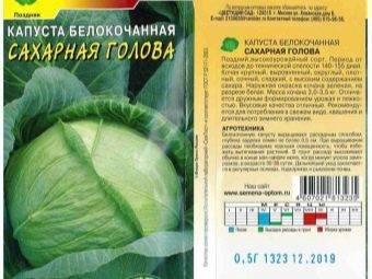 Капуста белорусская 455, 85: характеристика и описание сорта, отзывы